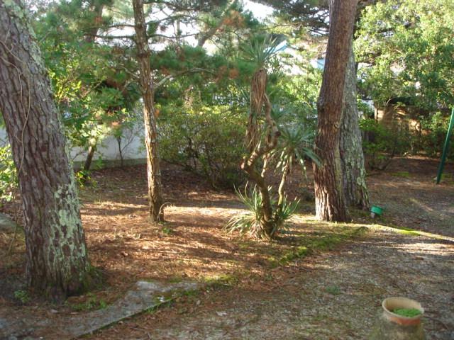 Location vacances villa type basque d 39 environ 100 m2 sur for 100 m2 de terrain